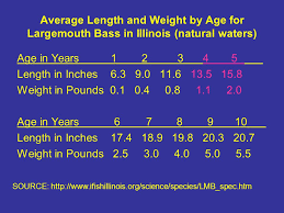 Largemouth Bass Age Chart Profiles Of Presently Cultured Species In Ohio Ppt Download
