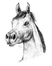 Favoloso Disegni Facili Da Disegnare A Mano Libera Rd56 Pineglen Con