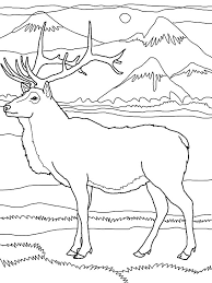 Small Picture Elk by the Mountain Coloring Pages Elk by the Mountain Coloring