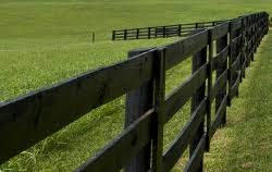 fencing lexington ky. Brilliant Fencing Face Board Fence On Fencing Lexington Ky Kentucky Horse Farms U0026