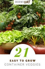 container garden vegetables. 21 Best Container Gardening Vegetables And Pot Friendly Fruits Garden B