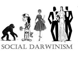 social darwinism political cartoon google search roots of  social darwinism political cartoon google search roots of public relations political cartoons