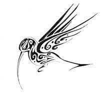 tribal hummingbird tattoo drawing. Unique Hummingbird Jamaican Hummingbird Tattoo Designs  Google Search With Tribal Hummingbird Tattoo Drawing B