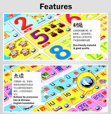 Chinese Sound Chart Baby Children Preschool Education Chinese Learning Wall