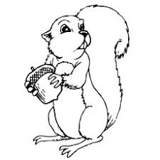 Chipettes Coloring Pages To Print Inspirational Chipmunk Coloring