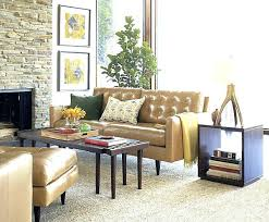 Tan Living Room Best Decorating