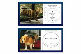 glassnow pet doors come in standard sizes