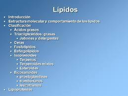 estructura y clasificacion de los esteroides