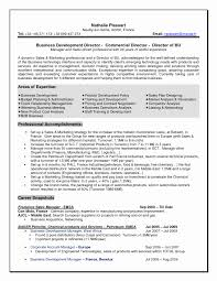 business analyst resume sample doc best of senior business analyst   business analyst resume sample doc beautiful personal essay my personal attributes help top custom essay