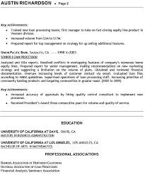 professionally written loan processor resume example