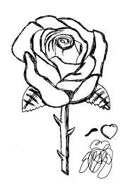 Rose Da Colorare E Ritagliare