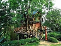 23 Unbelievable Treehouses That Are Better Than Your Dream House Treehouse Lake District