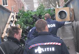 netherlands weed rules