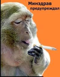 Реферат Безопасность жизнедеятельности Курение Содержание · Почему я выбрал эту тему стр 3 · Вступление стр 4 · Историческая