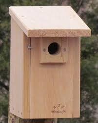 classic bluebird nestbox 1024x1024 jpg