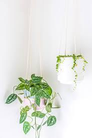 Hanging Planters Diy Hanging Planter Upgrade