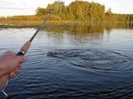 Картинки по запросу картинки ловля рыбы
