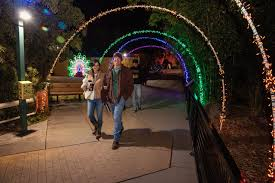 Zoo Lights Tucson Celebrate Ugly Sweater Night This Friday At Reid Park Zoo