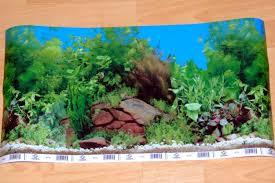 Aquarium Backgrounds A Basic Guide On Choosing Aquarium Backgrounds
