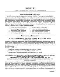 Executive Sales Resume Template Dadaji Us And Format For Salesman