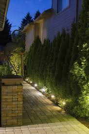 garden path lights. Enlightened Lighting - 20164 Garden Path Lights