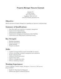 Functional Summary Resume Examples How To Write A Summary For Resume