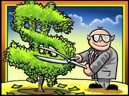 Image result for hedging cartoon