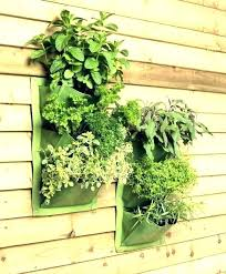 wall indoor living herb garden outdated decorating trends 2019 kit vertical point college 5 hydroponics vertica