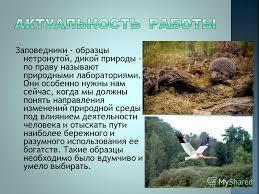 Презентация на тему Реферат на тему Заповедники России  2 Заповедники образцы