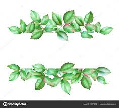 Green Card Template Watercolor Hand Drawn Green Leaves Floral Card Design Card Template