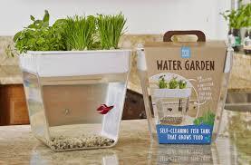 Self Cleaning Fish Tank Garden Fish Tank Herb Garden In One Kitchen Gadget Box