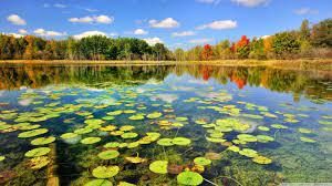 Beautiful Lake Wallpaper Hd - 1366x768 ...