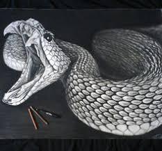 snake head drawings in pencil. Plain Drawings Snake Drawing To Head Drawings In Pencil