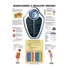 Maintaining A Healthy Weight Chart Explains Bmi, Diet & Good Health