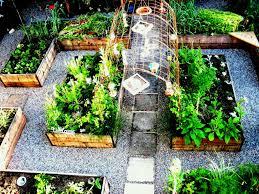 ideas nz elegant small kitchen garden design vegetable how to plan