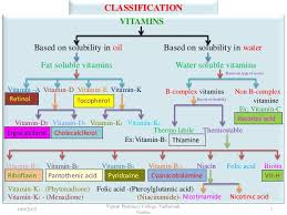 Water Soluble And Fat Soluble Vitamins Chart Fat Soluble Vitamins By Dr P Ravisankar