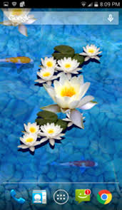 3d Fish Pond Live Wallpaper For Android Download Fishpond