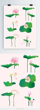 夏の莲の花叶のオリジナルイラストのデザインの要素 無料ダウンロード
