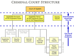 New York State Government Organizational Chart The Courts General Info N Y State Courts