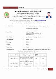 Resume Templates Engineering Professor Examples College Instructor