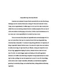 what is an editorial essay editorial essay examples of editorial  what is an editorial essay
