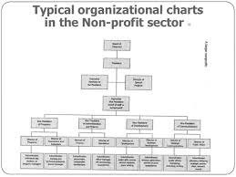 Overview Careers In Non Profit
