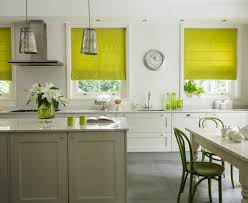 Roman Blinds In Kitchen Lime Green Patterned Roman Shades Ideas Photograph Green Blinds