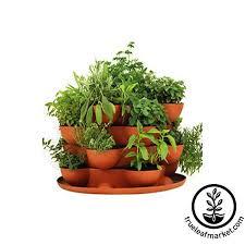 indoor herb garden kit. Stack \u0026 Grow With Culinary Herb Garden Kit Indoor