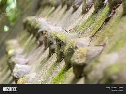 Front Row Design Background Stone Image Photo Free Trial Bigstock