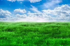 green grass blue sky.  Green Green Grass And Blue Sky Throughout L