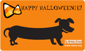 Happy Halloween Animal Friendly Ecards Safety Tips