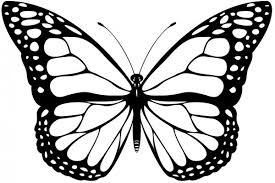 picture of a butterfly to colour. Plain Butterfly Butterfly To Colour In U20acu201c Coloringsu0027 World Picture Of A P