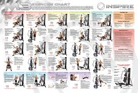 Multi Gym Wall Chart Awesome Weider Workout Chart Exercise Gym Workout Chart