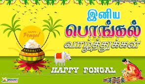 Tamil Pongal Greetings For Wallpapers ...